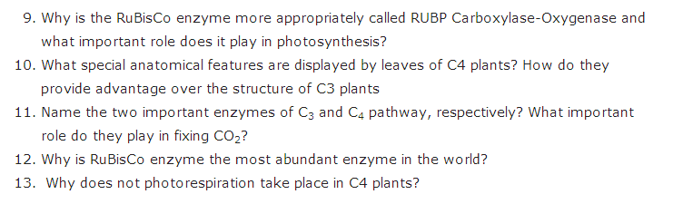 Important Questions Class 11 Biology Chapter 13 Photosynthesis Higher Plants Part 7