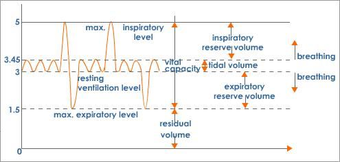 lung-volumes-and-capacities-graph