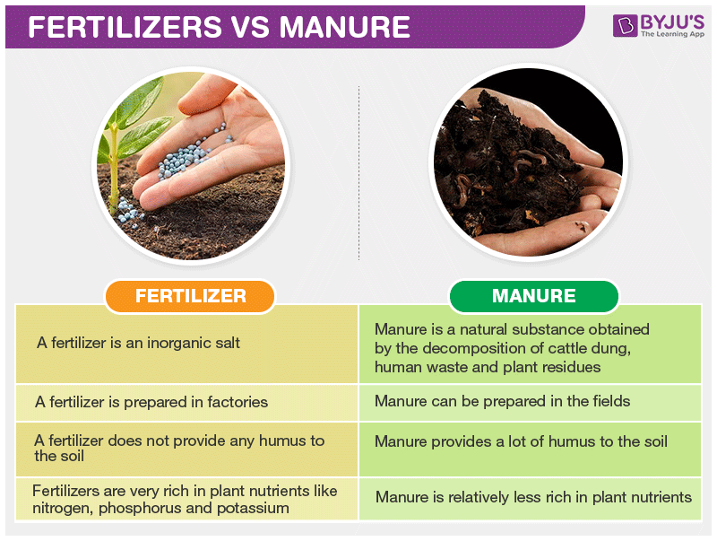 Fertilizers Vs Manure