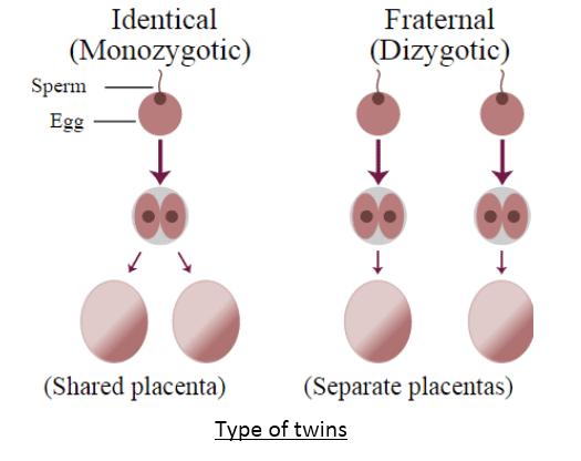 Heredity and Evolution