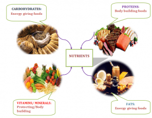 Nutrients &Balanced Diet