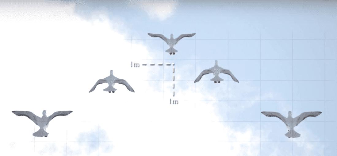 V Formation