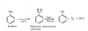 Phenols from Diazonium Salts