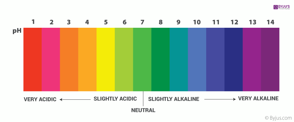 ph Scale of Acids and Bases