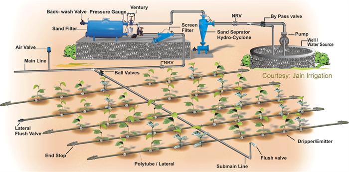 Drip irrigation - Water Management