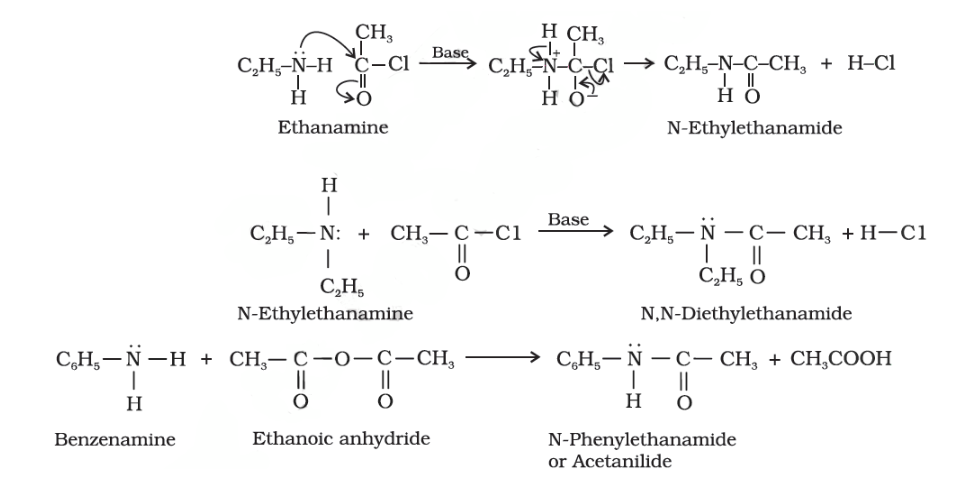Chemical Reactions of Amines