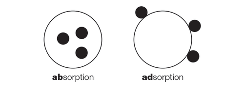 adosrption vs absorption