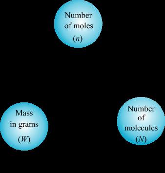 Mole - Concept Calculation