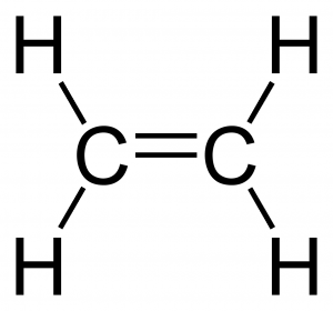 Ethene Carbon Compounds