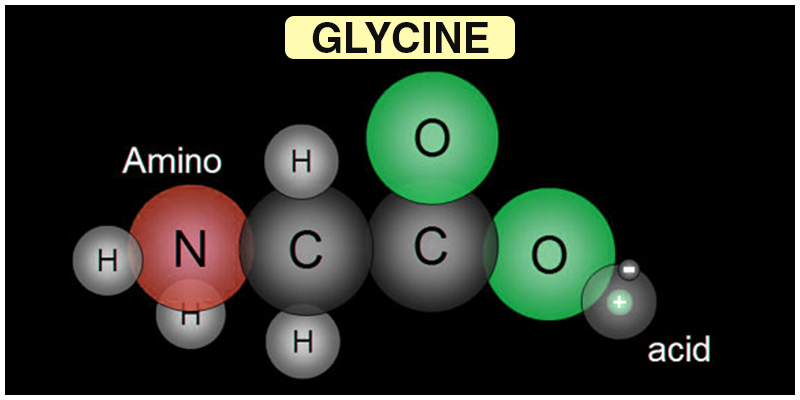 Glycine Structure