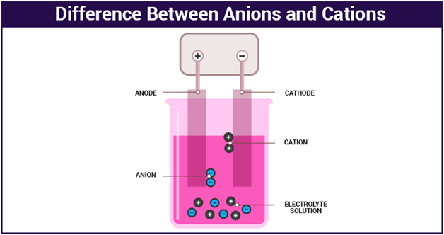 Anions and Cations