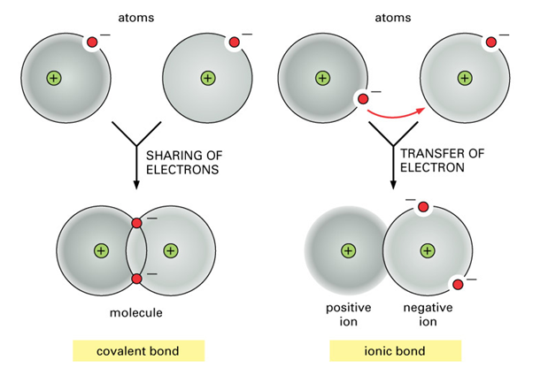 Covalent And Ionic Bonds