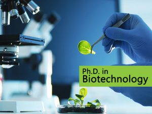 Ph.D. in Biotechnology