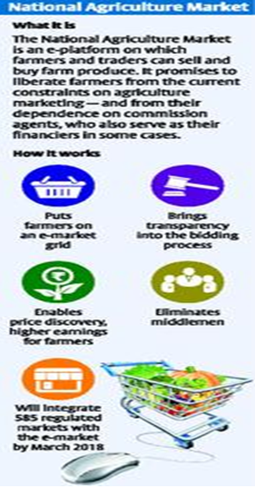 national agriculture market