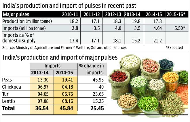 largest consumer and importer of pulses