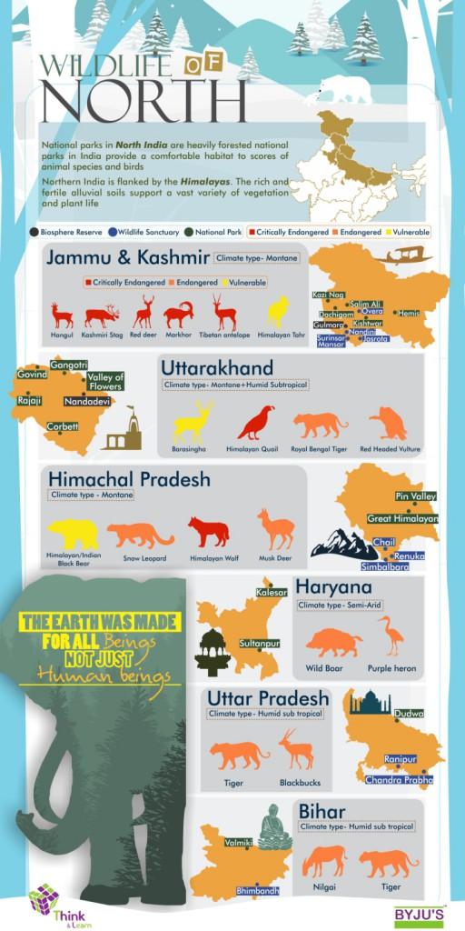 Wildlife in India - North India