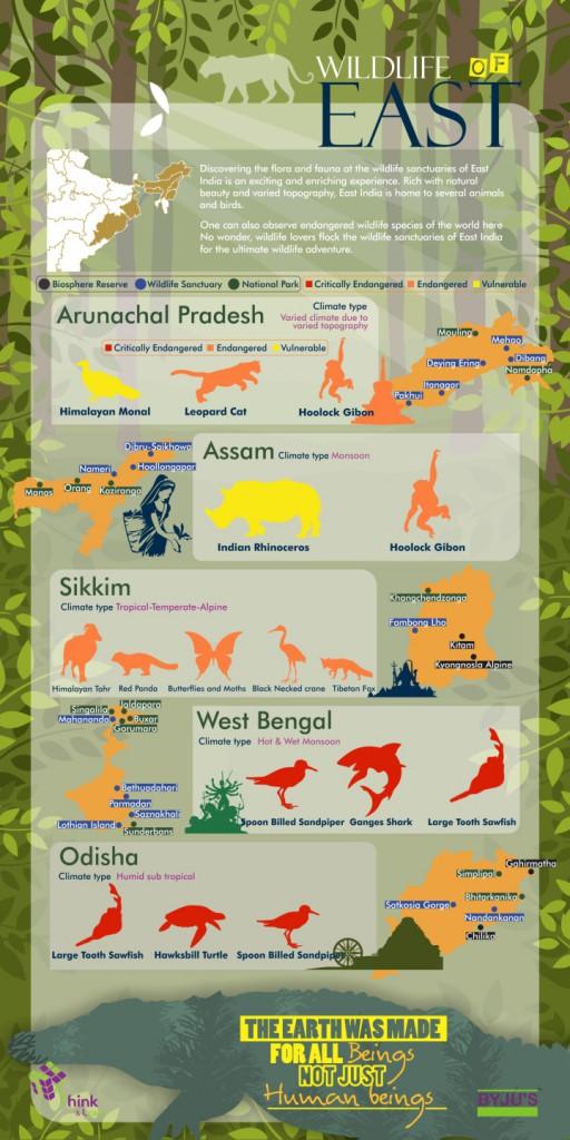 Wildlife in India - East India