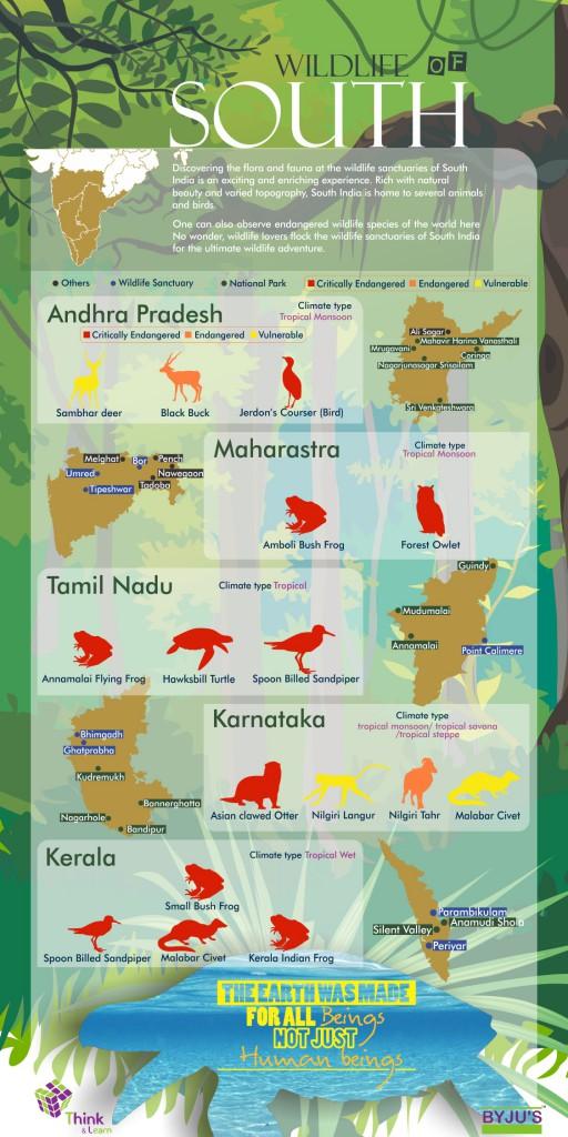 Wildlife in India - South India