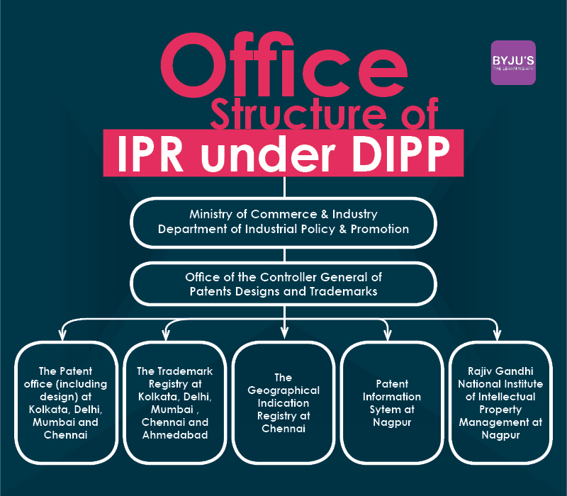 DIPP Structure