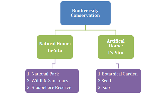 Tiger Conservation in India - Biodiversity Conservation Methods
