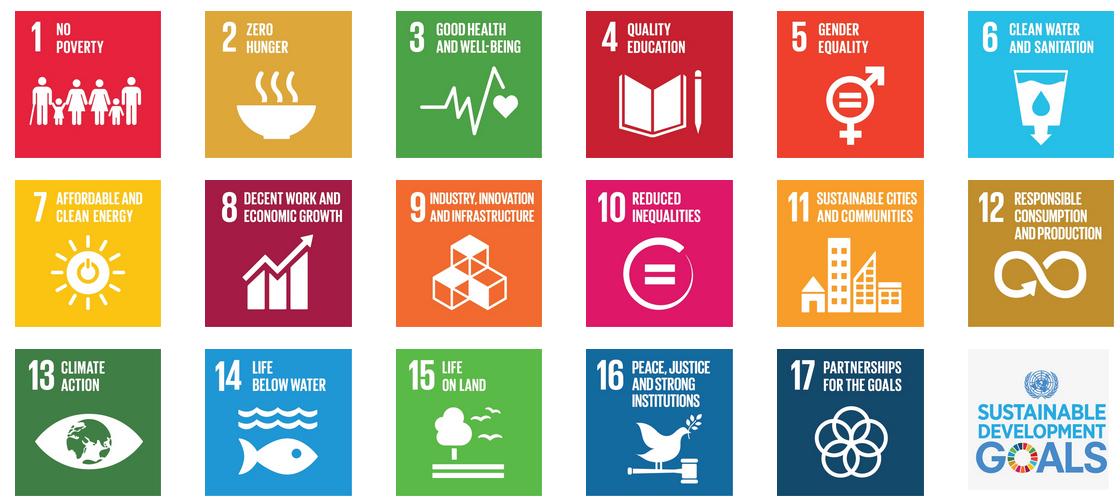 SDG India