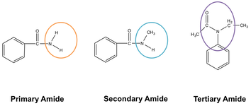 Amides | Functional Group, Types of Amides and Structure