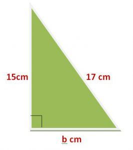Pythagoras Theorem Problem