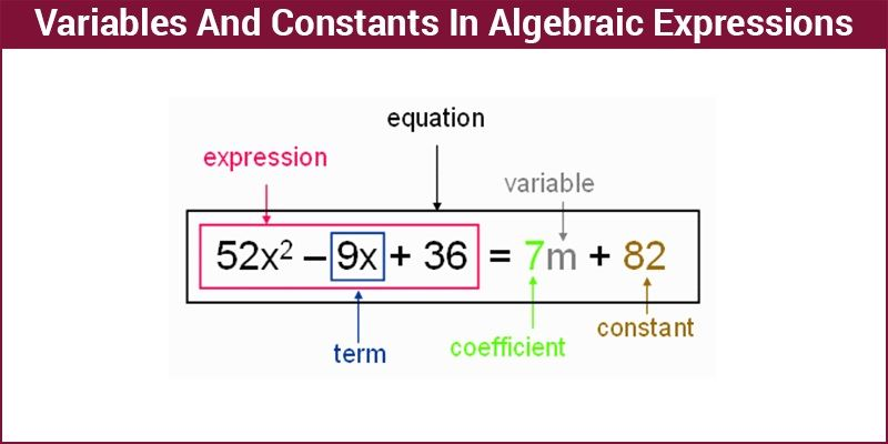 Variables and Constants in Algebraic Expressions