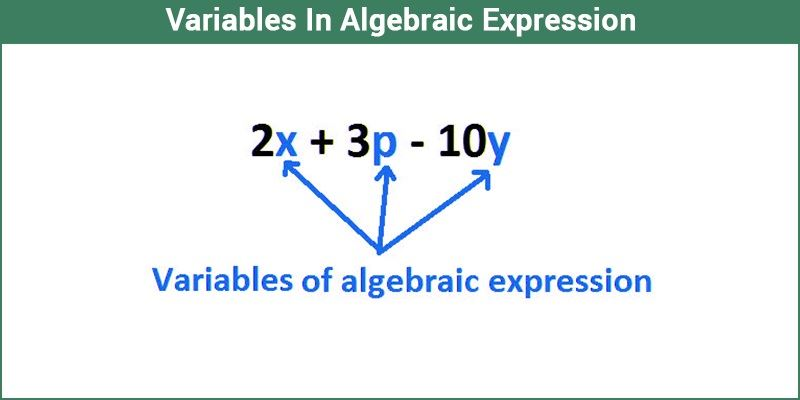 Variables In Algebraic Expression