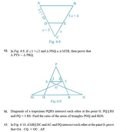 important questions class 10 maths chapter 6 triangles 3