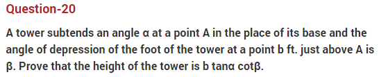 important questions class 10 maths chapter 9 applications trigonometry 20