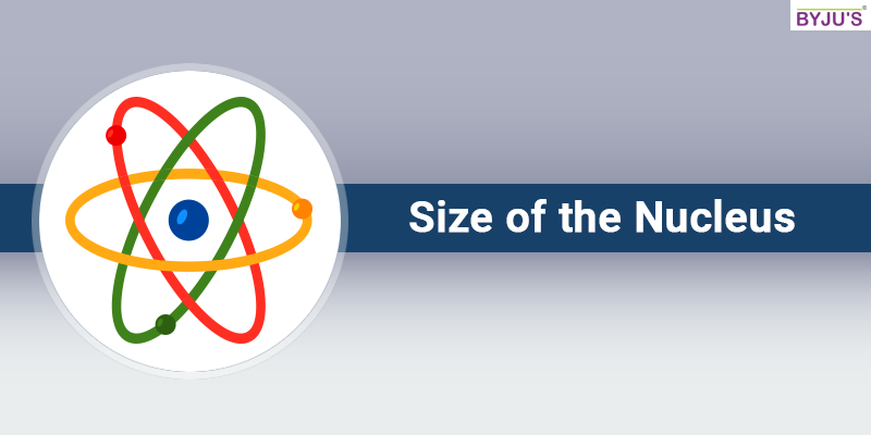 Size-of-the-Nucleus