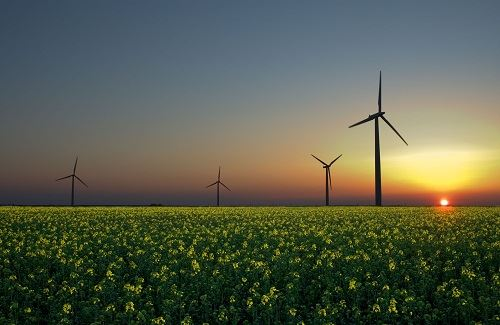 Wind Energy Farm (Renewable Resources of Energy)