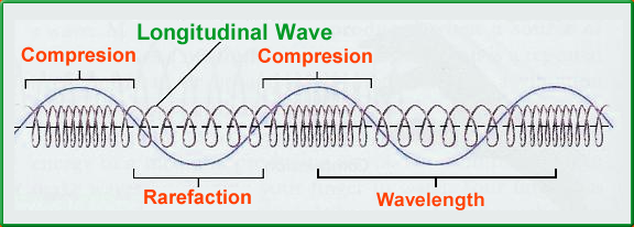 Longitudinal Wave - Definition, Examples, Diagram