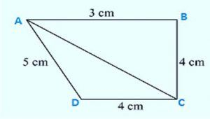 Find the area of the quadrilateral ABCD
