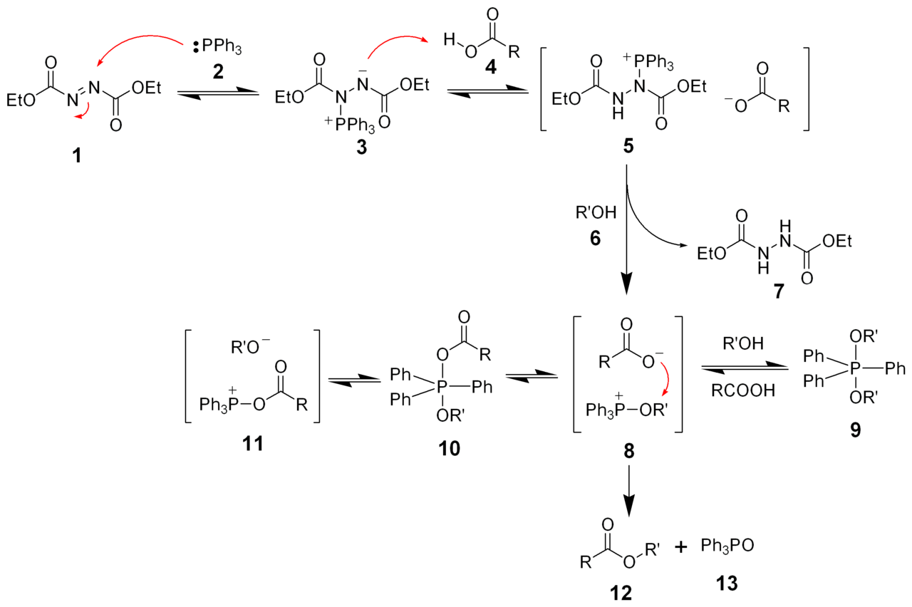 Reaction Mechanism of Mitsunobu Reaction