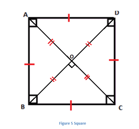 Properties of Square