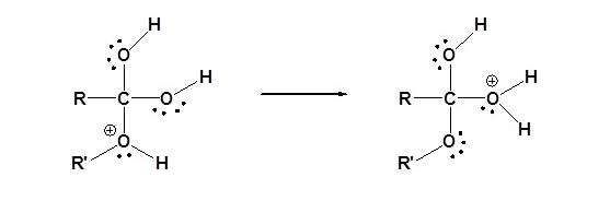 Fischer Esterification Mechanism Step 3