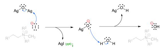 Hofmann Elimination Mechanism Step 2