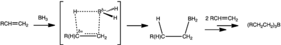 Hydroboration of terminal alkene to trialkylborane