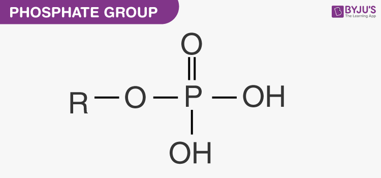 Phosphate group