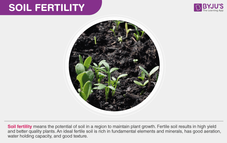 Soil Fertility: Replenishment Of Nutrients
