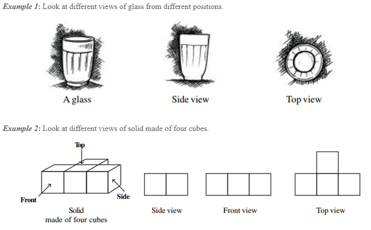 Visualising Solid Shapes Class 8 Notes Chapter 10