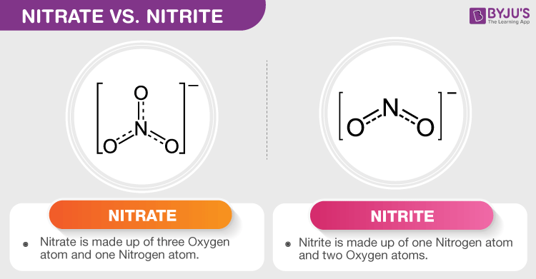 Difference Between Nitrite and Nitrate
