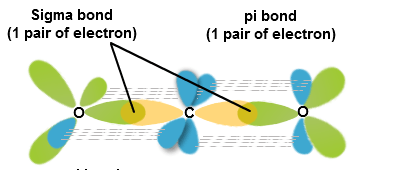 Sigma and Pi Bonding in Valence Bond Theory