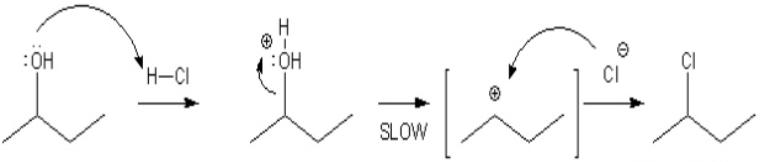 Lucas Test Mechanism