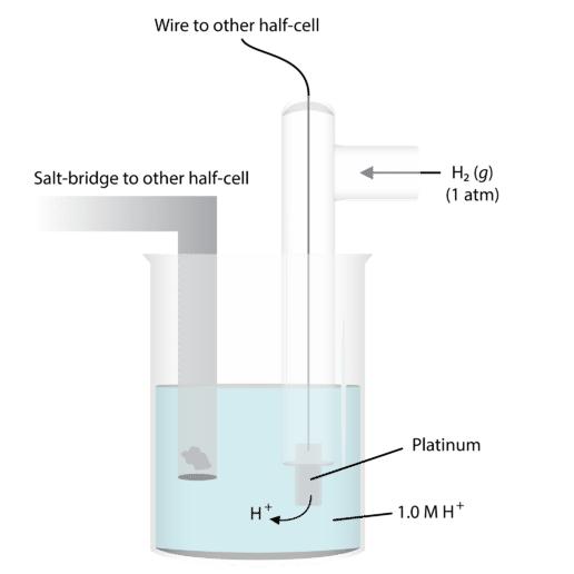 Standard Hydrogen Electrode Diagram