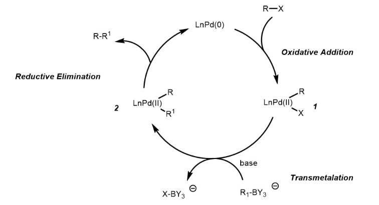 Suzuki Coupling Reaction Mechanism Catalytic Cycle