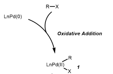 Suzuki Coupling Reaction Mechanism Step 1