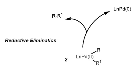 Suzuki Coupling Reaction Mechanism Step 3